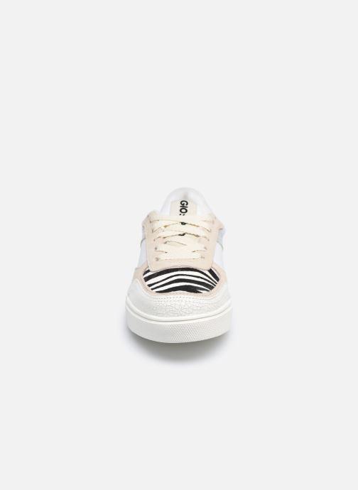 Baskets Gioseppo INDORE Blanc vue portées chaussures