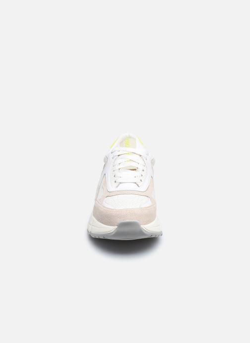 Baskets Gioseppo BERLAAR Blanc vue portées chaussures