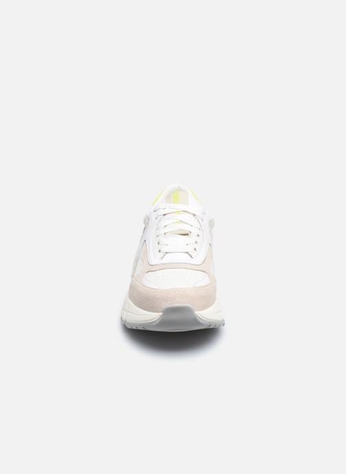 Sneakers Gioseppo BERLAAR Bianco modello indossato