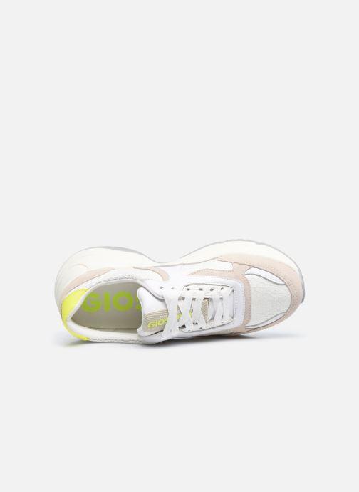 Sneakers Gioseppo BERLAAR Bianco immagine sinistra