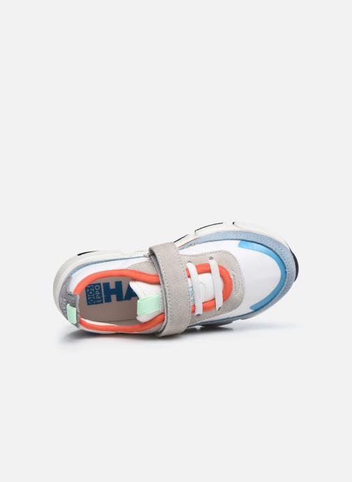 Sneakers Gioseppo HAMOIS Multicolor links