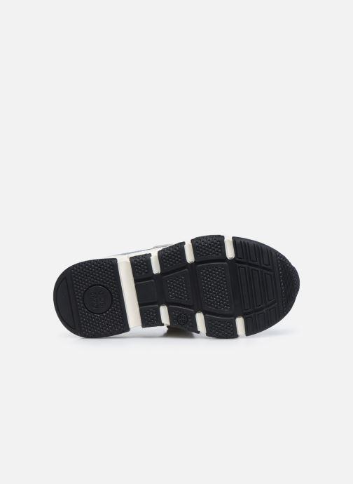 Sneaker Gioseppo HAMOIS mehrfarbig ansicht von oben