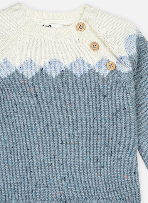 Vêtements Cyrillus Pull Louis Bleu vue face