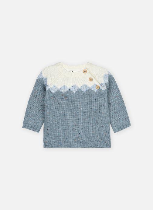 Vêtements Cyrillus Pull Louis Bleu vue détail/paire