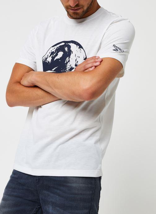 Vêtements Reebok Cl Tee (Ree)Cycle Blanc vue droite