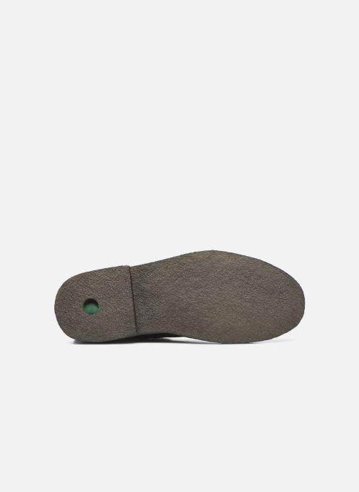 Stiefeletten & Boots Kickers CLUBCIT schwarz ansicht von oben