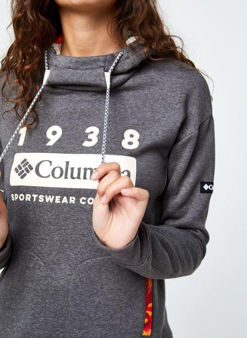 Vêtements Columbia Columbia Lodge Hoodie Gris vue face