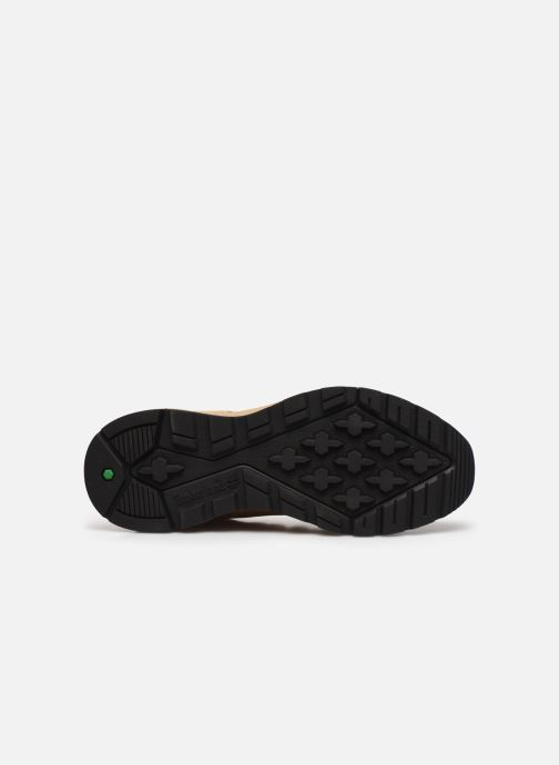 Sneaker Timberland Sprint Trekker Mid beige ansicht von oben