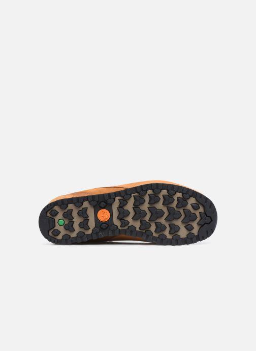 Sneaker Timberland Splitrock 3 beige ansicht von oben