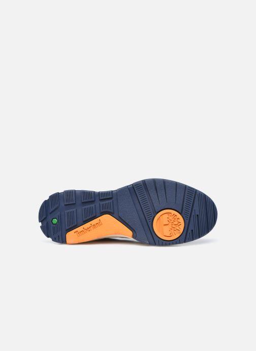 Sneakers Timberland Tree Racer Textile Sneak Azzurro immagine dall'alto