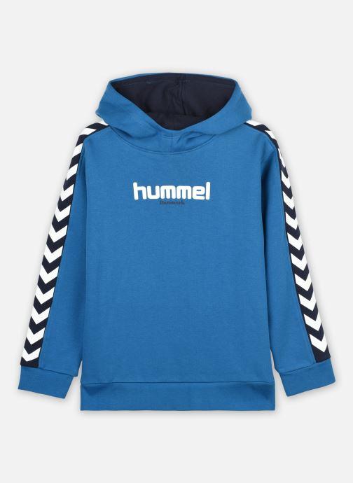 Vêtements Accessoires Hmltakao Hoodie