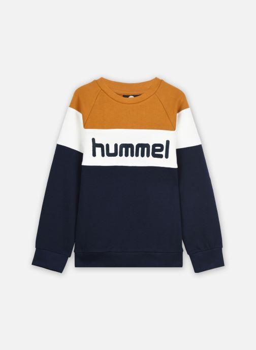 Vêtements Hummel Hmlclaes Sweatshirt Marron vue détail/paire