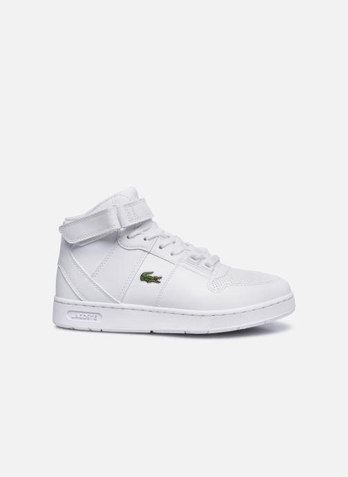 Sneaker Lacoste TRAMLINE MID 0120-1 weiß ansicht von hinten