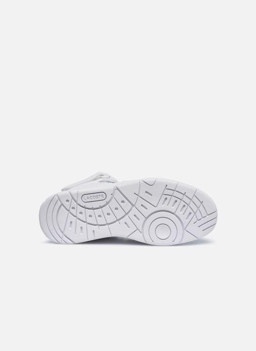 Sneaker Lacoste TRAMLINE MID 0120-1 weiß ansicht von oben
