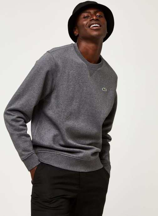 Vêtements Lacoste Sweatshirt ML Croco Gris vue détail/paire