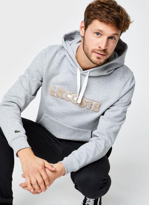 Sweatshirt Hoodie Lacoste