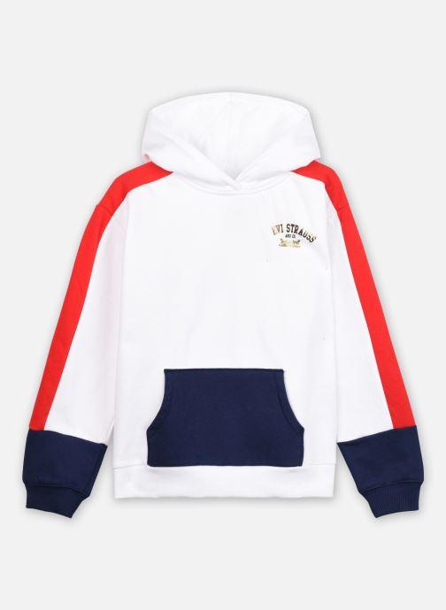 Sweatshirt hoodie - L/s Color Block Hoodie