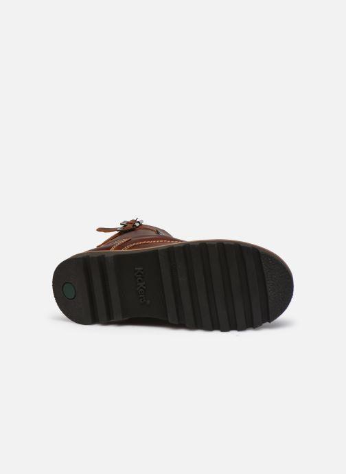 Stiefeletten & Boots Kickers NEOMEENELY braun ansicht von oben