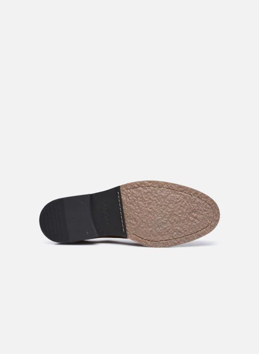 Zapatos con cordones Kickers ALPHADERB Marrón vista de arriba