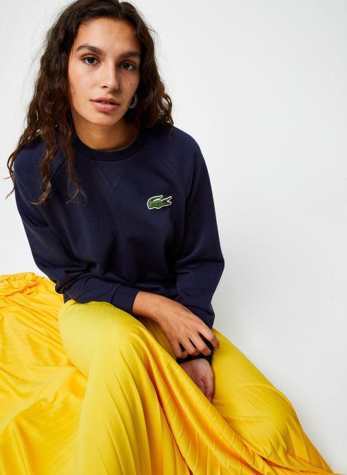Vêtements Accessoires SF2400