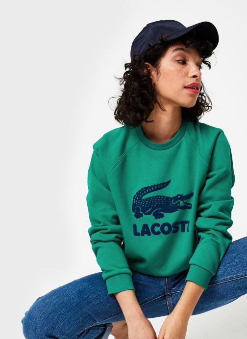 Vêtements Lacoste Sweatshirt SF5640 Vert vue détail/paire