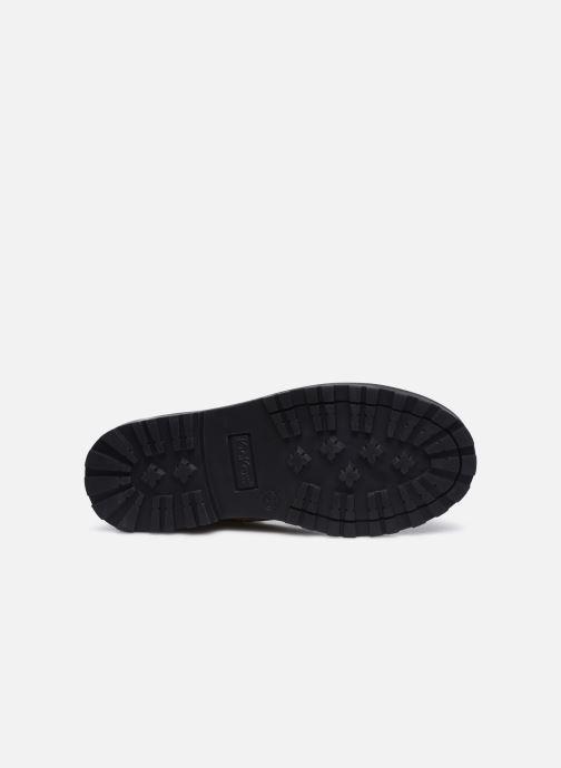 Stiefeletten & Boots Kickers Grooky braun ansicht von oben