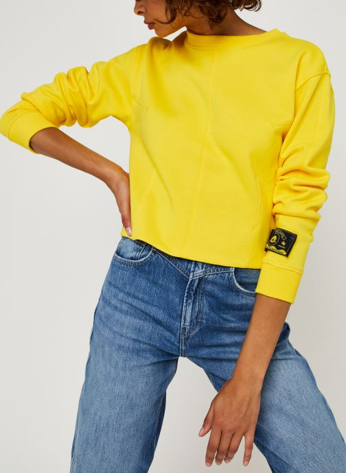 Vêtements Accessoires Sweat with shaped darts and volume in the sleeves
