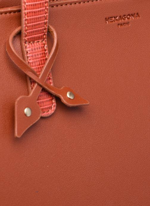Handtaschen Hexagona POEME CABAS A4 ZIPPE braun ansicht von links