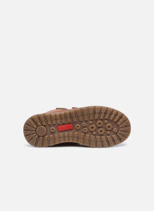 Boots en enkellaarsjes Primigi PCA 64101 Roze boven