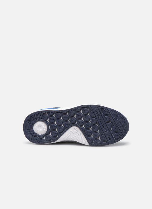 Sneakers Primigi PME 64534 Blauw boven