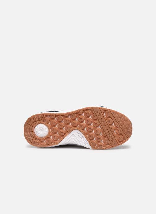 Sneaker Primigi PME 64534 braun ansicht von oben