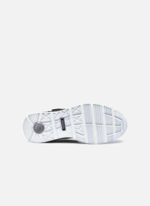 Sneaker Primigi PTB 63959 grau ansicht von oben