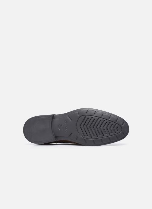 Zapatos con cordones Geox U HILSTONE WIDE Marrón vista de arriba