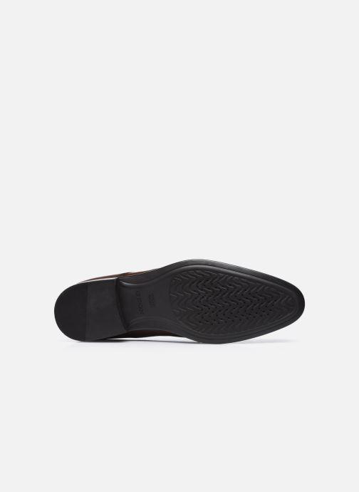 Chaussures à lacets Geox U IACOPO U049GC Marron vue haut