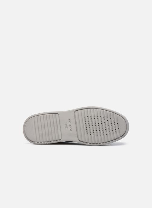 Sneakers Geox U LEVICO B ABX Azzurro immagine dall'alto