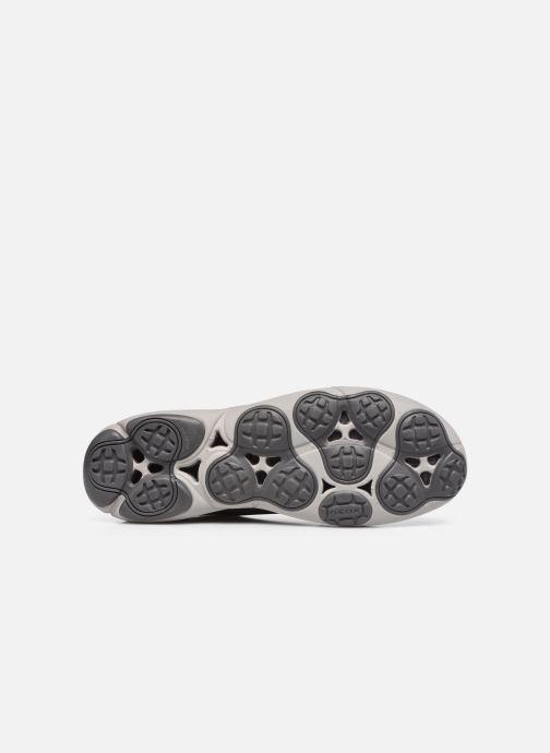 Sneaker Geox U NEBULA SUSTAINABILITY grau ansicht von oben