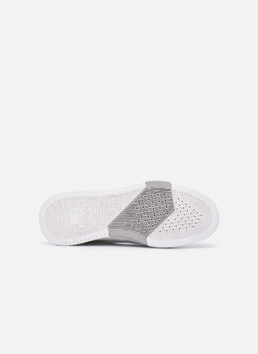 Sneakers Geox U SEGNALE Bianco immagine dall'alto