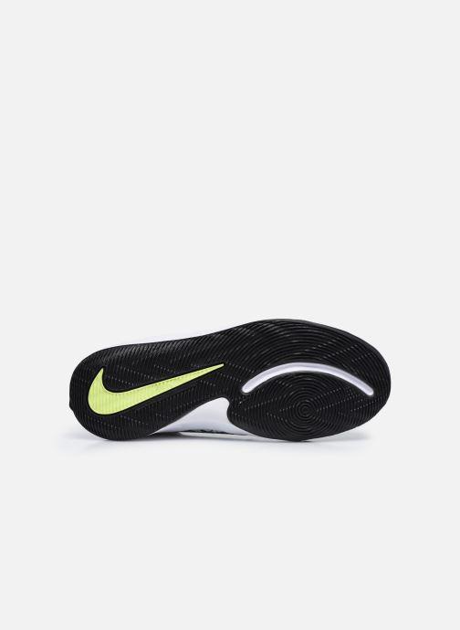 Sportschuhe Nike Team Hustle D 9 (Gs) weiß ansicht von oben