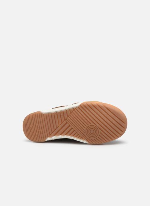 Sneaker Shoo Pom John Bowl Scratch grün ansicht von oben