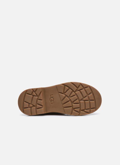 Stiefeletten & Boots UGG Bolden K gold/bronze ansicht von oben