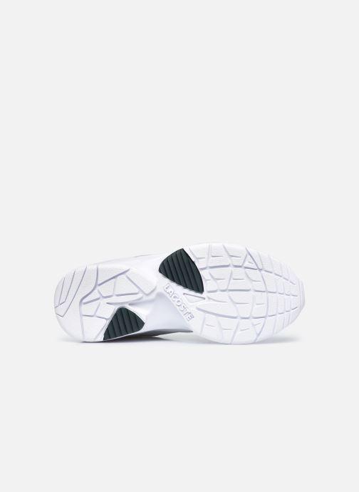 Baskets Lacoste Storm 96 Lo 0120 3 W Blanc vue haut