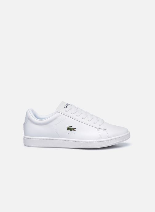 Sneakers Lacoste Carnaby Evo 0120 4 Bianco immagine posteriore
