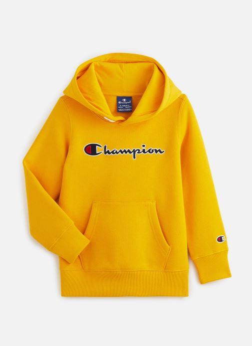 Sweatshirt hoodie - Hooded Sweatshirt 305376