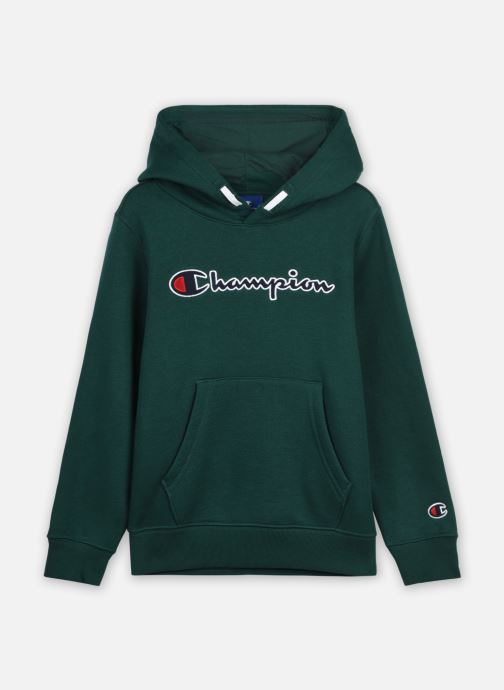 Hooded Sweatshirt 305376