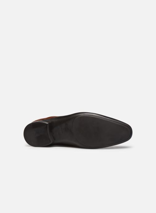 Chaussures à lacets Azzaro OUTINO2 Marron vue haut