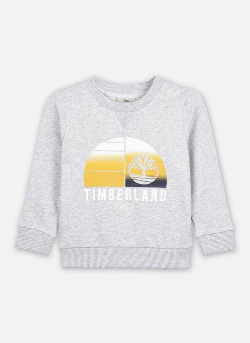 Vêtements Timberland T25Q93 Gris vue détail/paire