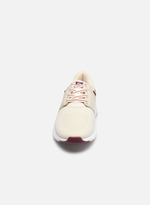 Sneakers TBS Cladell Beige modello indossato