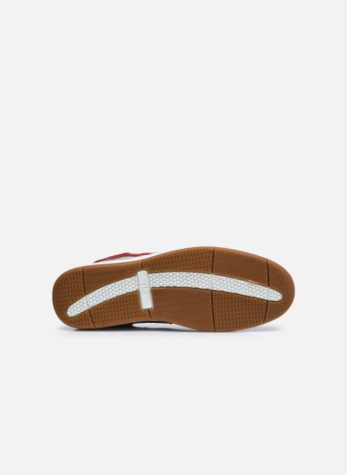 Zapatos con cordones TBS Safford Rojo vista de arriba