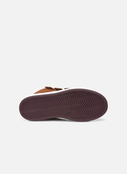 Sneaker Jacadi Come braun ansicht von oben