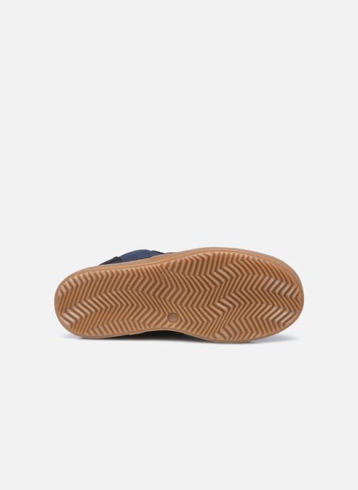 Stiefeletten & Boots JACADI Pablito blau ansicht von oben